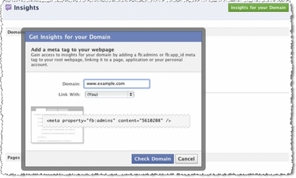 Facebook Insights for Domains form
