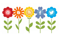 Image of flowers with social icons