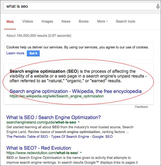 Screenshot of 'What is SEO' Google results page
